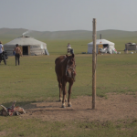 Bikpacking the Mongolian Steppe | Jay Ritchey/Jay Bird Films
